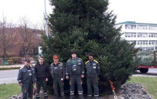 Weihnachtsbaum aufgestellt am Chemiepark Marl